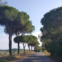 Assisi-Róma zarándokút 9.Nap (via Francigena di San Francesco)