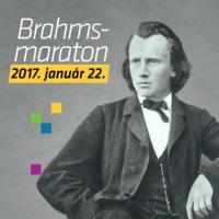 Brahms maraton 2017