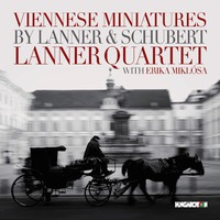 Lanner kvartett, lemezbemutató a Rózsavölgyiben