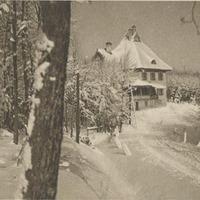 Hírmúzeum 2011. év 49. hetére