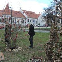 Tojást termő fa, virágos főtéri nyuszik