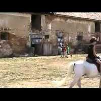 Szombati piacozás - videó
