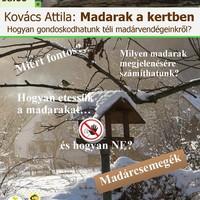 Madarak a kertben - önképzőkör - 2019. november 8., péntek