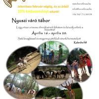 Nyuszi-váró lovas tábor