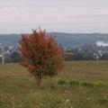 Az ősz színei és illatai