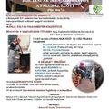 Disznóvágás Bakonybélben - 2020. január 25., szombat