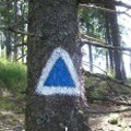 A Barót-Zsögödfürdő kék háromszög turistaút felújítása Erdővidéken* - frissítés