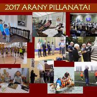 2017 ARANY PILLANATAI