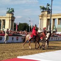 Doppingvétség a versenyen, a zirci kishuszár nyerte el az első helyet