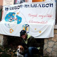 Kép-újság 61. szám, 2012. 11. 20.