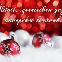 Boldog, áldott karácsonyt, és sikerekben gazdag, boldog új évet kívánok!