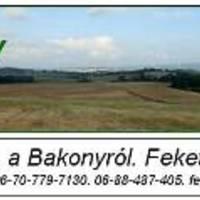 Elindult a www.abakony.hu közéleti hírportál