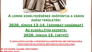 Lomtalanítás - Zirc, 2020. évben