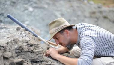 Újabb hétszáz dinócsont került elő a Bakonyban