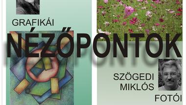 Kollarics Erika és Szögedi Miklós alkotásaiból nyílik kiállítás a Békefi Antal Városi Könyvtár közművelődési termében