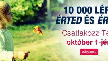 Jótékonysági séta - 2017. október 1., Zirc