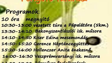 Medvehagymanap Fenyőfőn - 2017. 04.08.