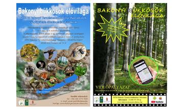 Rajz- és videópályázat _ MTM Bakonyi Természettudományi Múzeuma