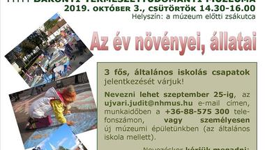Aszfaltrajz-verseny - Zirc, 2019. október 3., scütörtök
