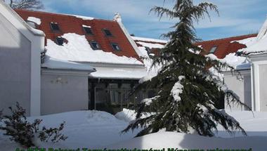 Karácsonyi üdvözlet - MTM Bakonyi Természettudományi Múzeum