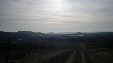 Lesz-e tavasz a Művészetek Völgyében? - túraajánló március 2-3-ra