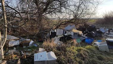 Elektronikus hulladék - az erdeink vadjai nem kérik, az iskola alapítványa igen
