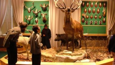 A Bakonyi Természettudományi Múzeum Baráti Körének felhívása kutatási programok támogatására