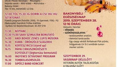 Pityóka Party - Bakonybél, 2019. 09.28., szombat