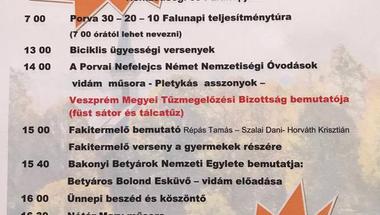 XVI. Porvai Nemzetiségi- és Falunap - 2017. július 22.