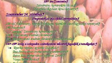 Magas-Bakonyi Krumpliszüreti és Művészeti Fesztivál