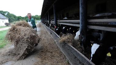 Kihúzták a földet a gazdák lába alól - Nagyesztergár