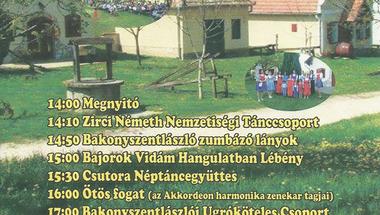 V. Pincefesztivál - Bakonygyirót (25 km)