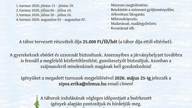 Bakonyi Felfedezőtábor - igényfelmérés