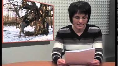Zirci TV műsora 2013. február 1-5.