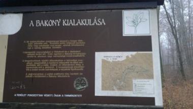 Boroszlán kiskör (Odvas-kő) - Csemetés túrák