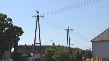 Kép-újság, 151. szám  2014. 07. 17.