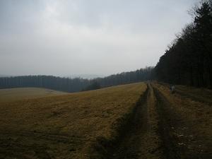 Kőbánya_11-02-19 (9).JPG