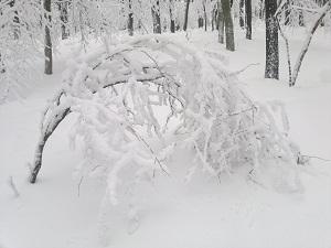 2013-02-23-2522.jpg