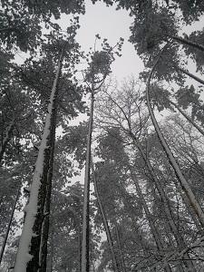 2013-02-23-2525.jpg