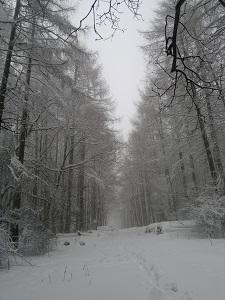 2013-02-23-2533.jpg