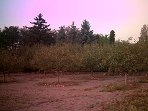 AK_2011-09-15_27 192.jpg