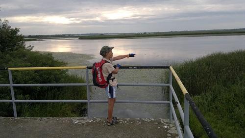 Tisza-tó_1.jpg