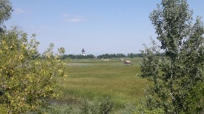 Tisza-tó_2 (3).jpg