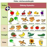 Kereszt-allergia