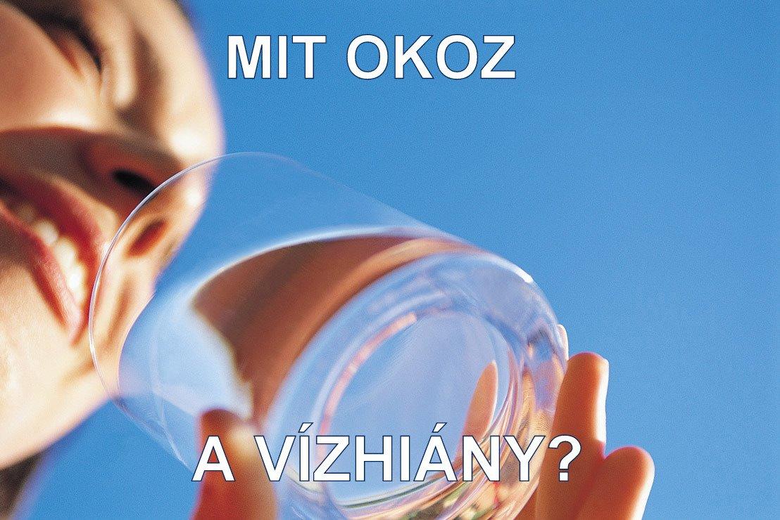 vizhiany.jpg