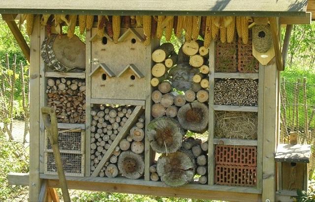 bughotel_birdhotel.jpg