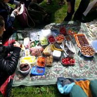 Mi is az a vegán piknik és mire, miért jó?