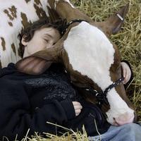 16 tipp kezdő vegánoknak