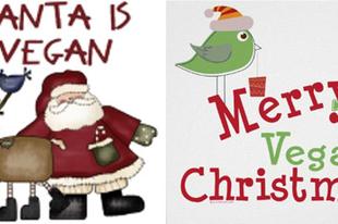 TOP 6 karácsonyi ajándék egy vegánnak 2/2. rész