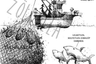 2050-re kizabáljuk az óceánt?